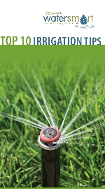 Top 10 Irrigation Tips