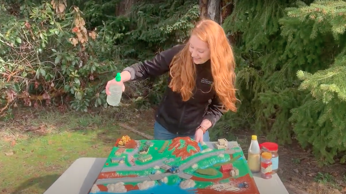 Watershed Model Demonstration